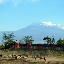 Amboseli Safari Lodge